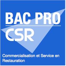 BP CSR.png